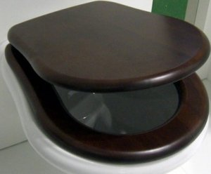 Исследования ученых показали: сиденье унитаза должно быть поднято