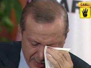 Эрдоган креативит