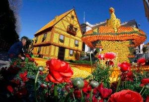 Франция: лимоны – это не только полезно, но и красиво
