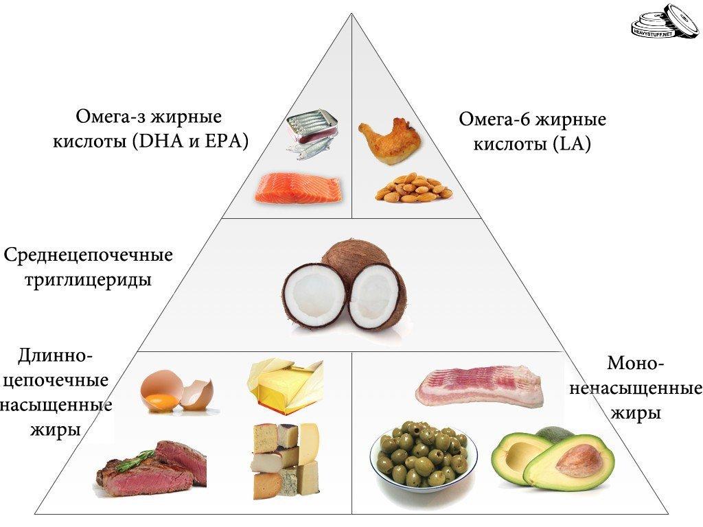 Польза насыщенных жиров для организма