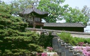 Корея – потрясающий по наглядности пример разных путей развития