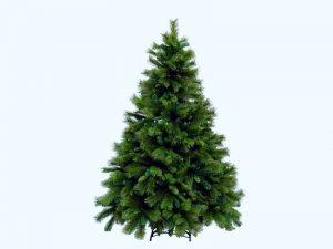 Баварская елка станет рождественским украшением Ватикана