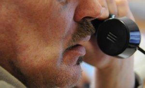 Британцев, сообщивших о пьяном водителе, ждет денежная премия