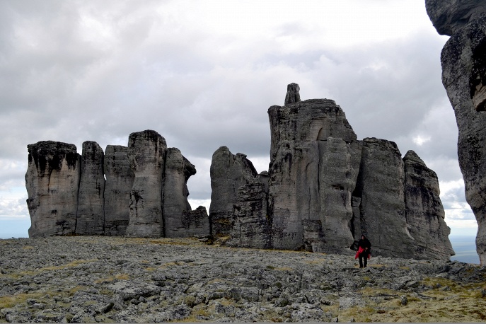 Национальный парк мамонтовой фауны сделает Центральную Арктику привлекательным туристическим объектом