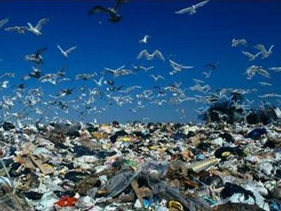 Когда же уберут весь мусор?