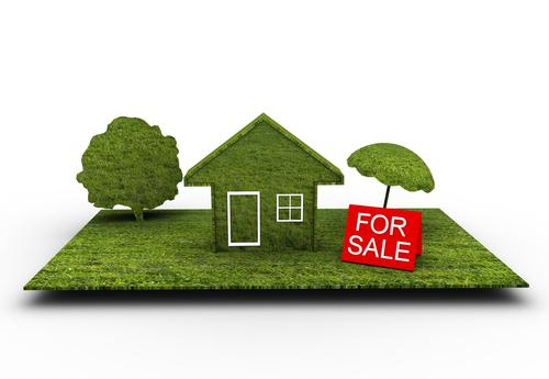 Массовая скупка земельных участков уже началась!