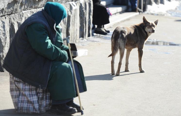 В Госдуму внесен законопроект о штрафах за попрошайничество с животными
