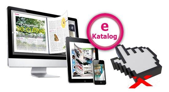 E-Katalog: уникальный сервис для сравнения цен на товары