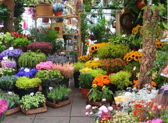 цветы в бутике