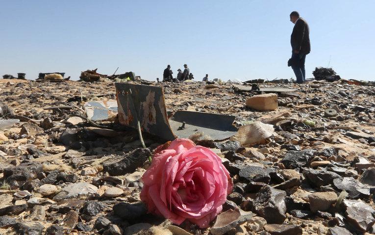 Власти Петербурга не соглашаются с версией о взрыве на борту А 321 невзирая заявления Египта и обнаруженные элементы