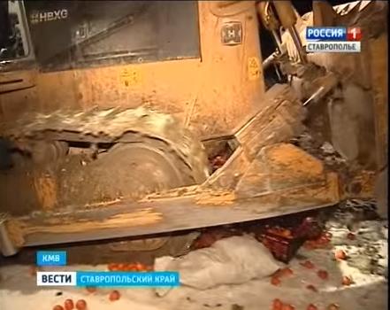 Россельхознадзор подверг уничтожению находившиеся в реализации турецкие мандарины