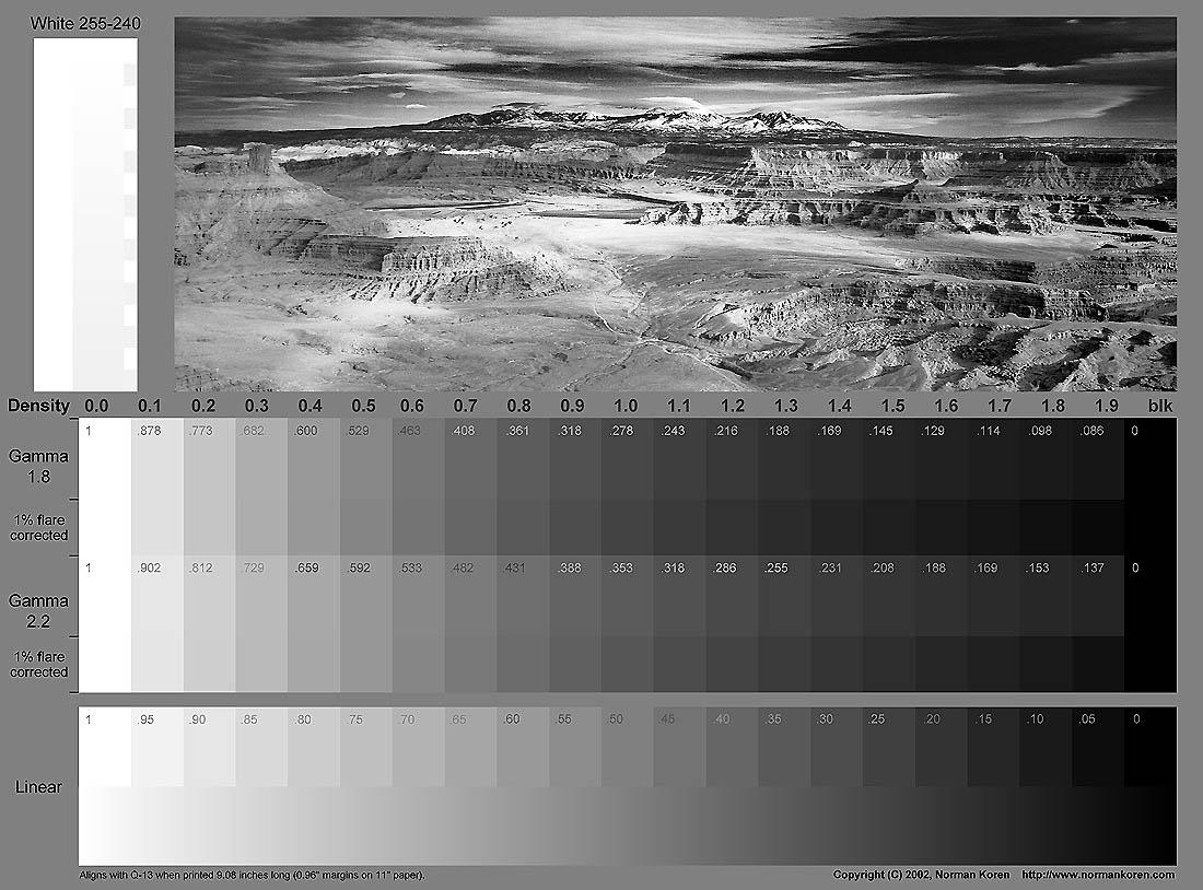 Сфера применения черно-белой печати