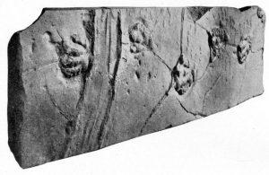 Движущиеся камни эпохи динозавров обнаружены в США
