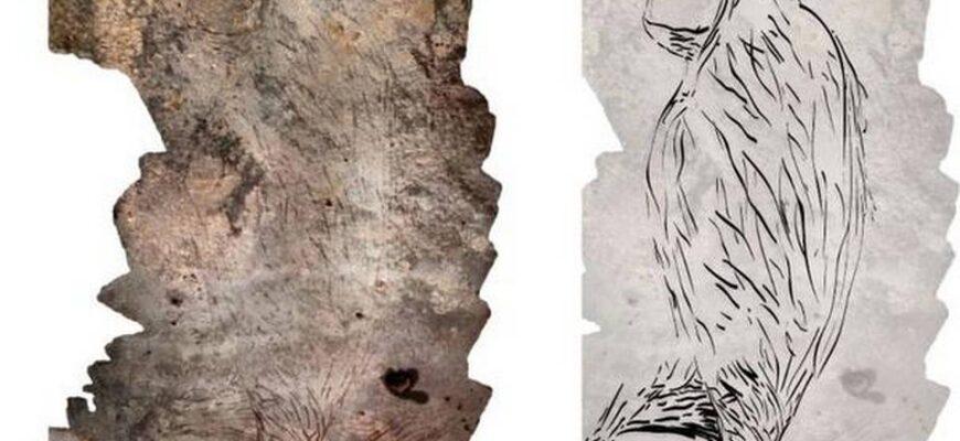 наскальный рисунок кенгуру