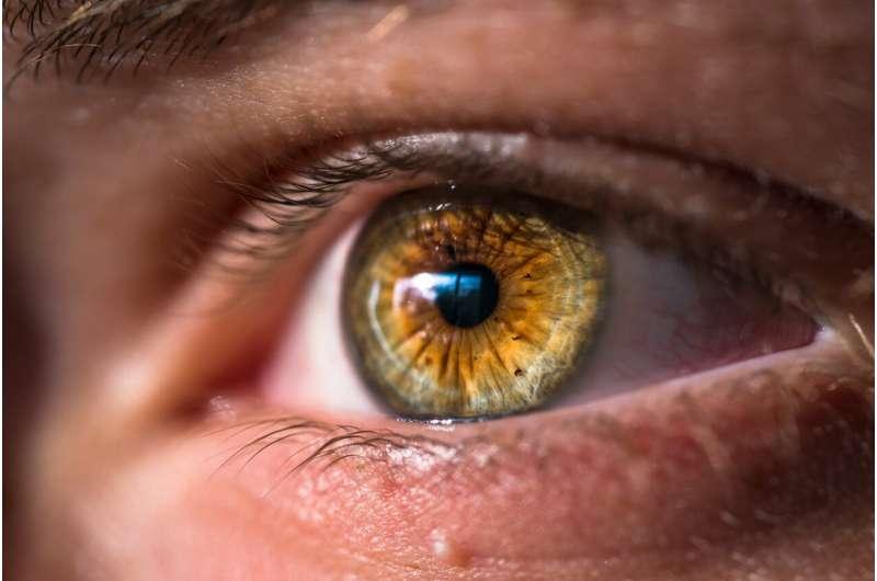 Изменения в глазах могут быть ранним предупреждением о болезни Альцгеймера