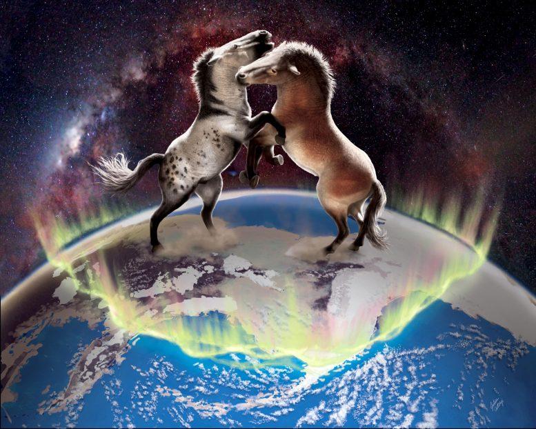 ДНК древней лошади показывает связь генов между североамериканскими и евразийскими лошадьми