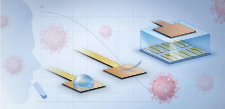 Новая технология биосенсора делает тестирование на коронавирус быстрым и легким