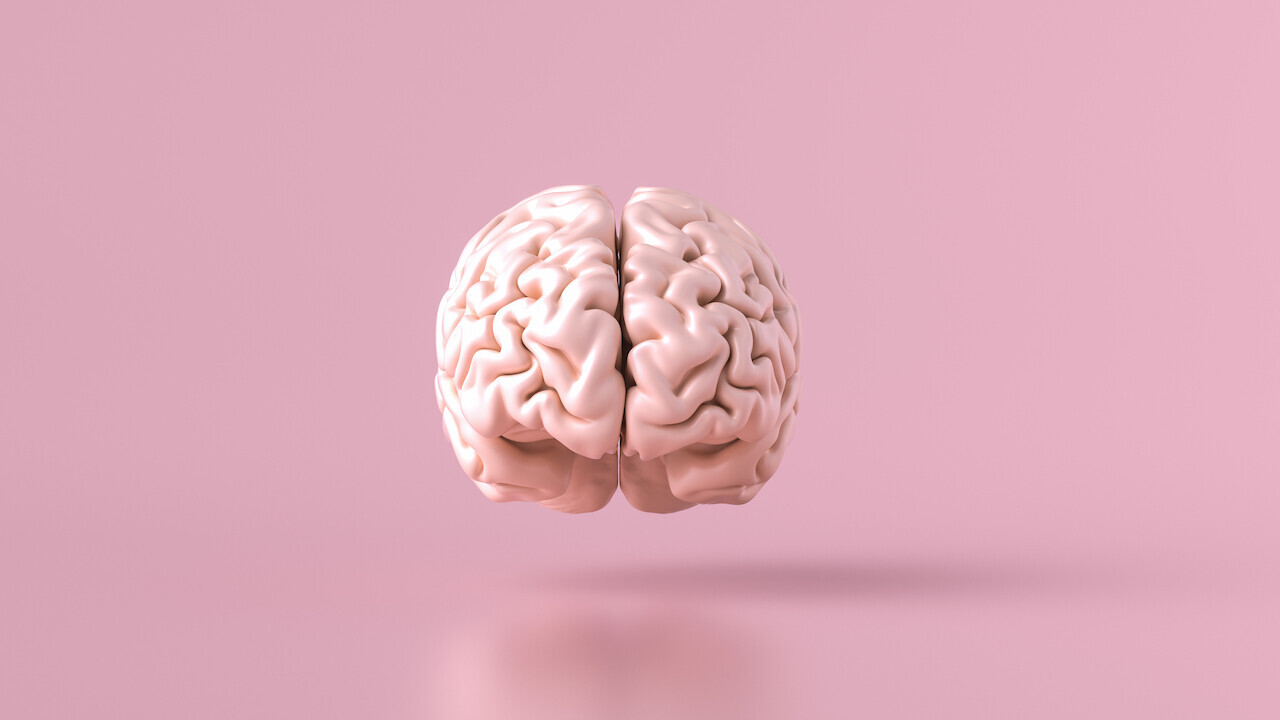 PNAS: Математическая модель мозга на базе ИИ похожа на человеческий разум