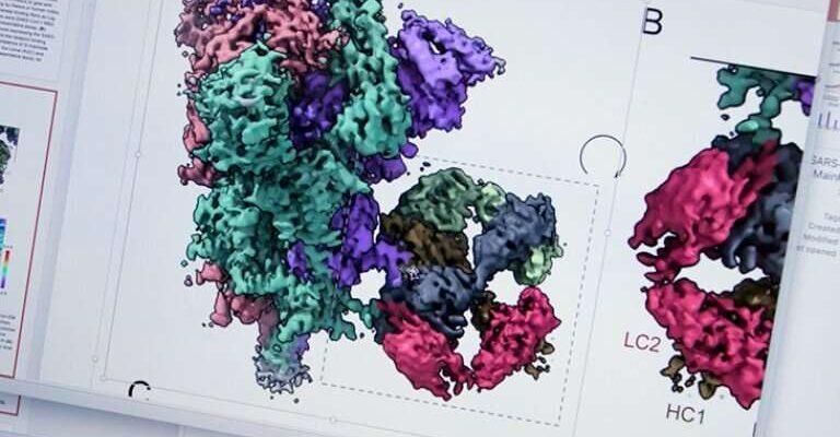 Новая вакцина блокирует COVID-19 и его варианты, а также другие коронавирусы