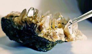 Глубокие минеральные жилы коренных пород являются кладбищами микробов