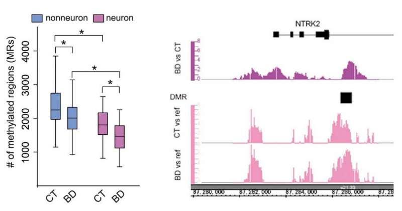Изменения метилирования ДНК в нейронах пациентов с биполярным расстройством