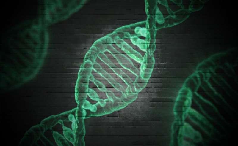 Рак простаты возможно связан с шизофренией