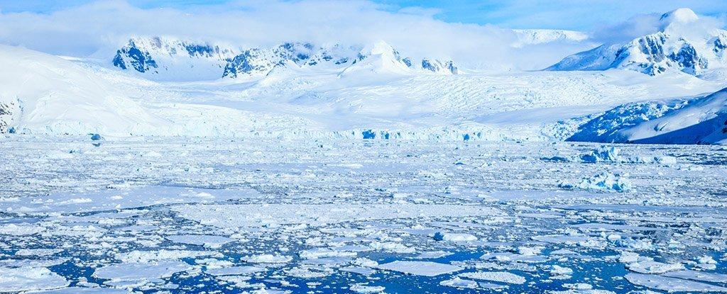 Новое исследование показывает, что маори путешествовали в Антарктиду как минимум за 1000 лет до европейцев