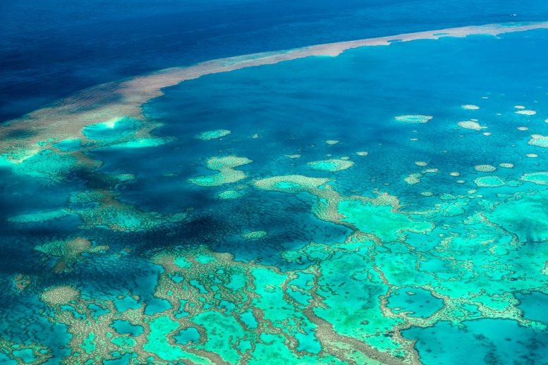 Закачка подщелачивающего агента в океан, чтобы компенсировать 10-летнюю стоимость подкисления Большого Барьерного рифа