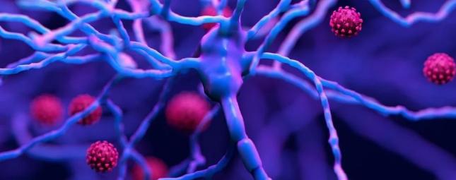 Воспаление мозга от COVID-19 пугающе похоже на воспаление от болезни Альцгеймера