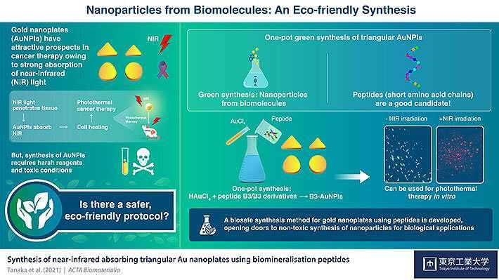 Синтез наночастиц зеленого золота для лечения рака с использованием биомолекул
