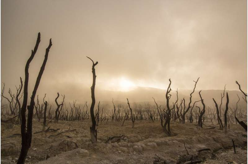Понимание прошлых переломных моментов в изменении климата может помочь нам подготовиться к будущему
