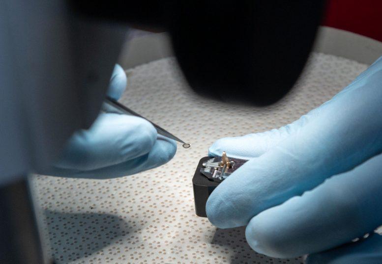 Первый образец астероида Рюгу прибыл в Космический центр Джонсона НАСА