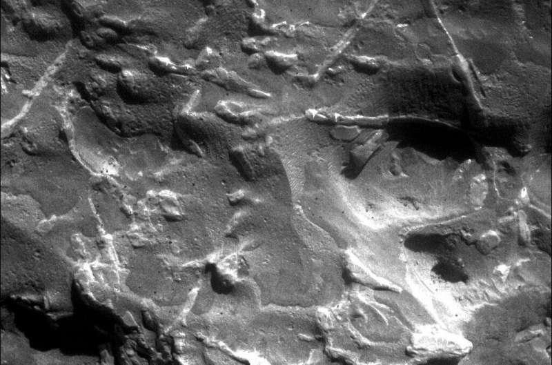 Встречайте марсианских охотников за метеоритами