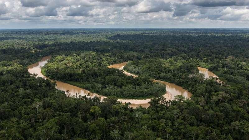 Исследование НАСА показало, что способность тропических лесов поглощать углекислый газ снижается