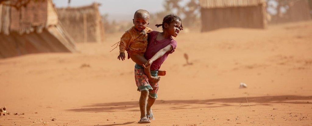 Крайняя нехватка продовольствия может резко возрасти в 23 горячих точках по всему миру