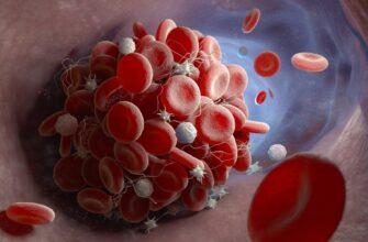 Учёные выяснили, почему у пациентов с ковидом образуются опасные для жизни сгустки крови