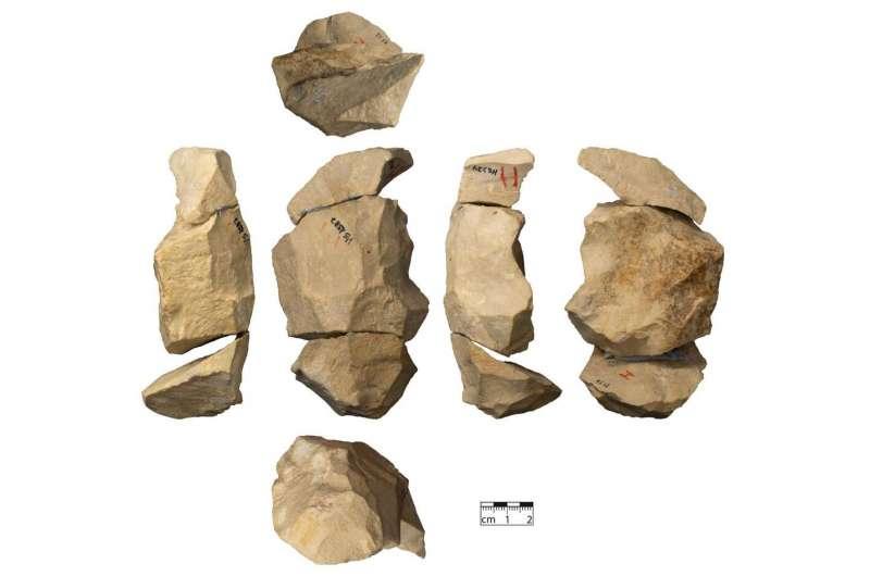Поздние неандертальцы использовали сложные техники изготовления орудий труда